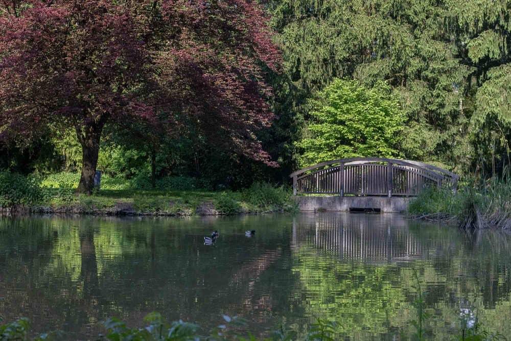 Donnenbergerpark-Picknick