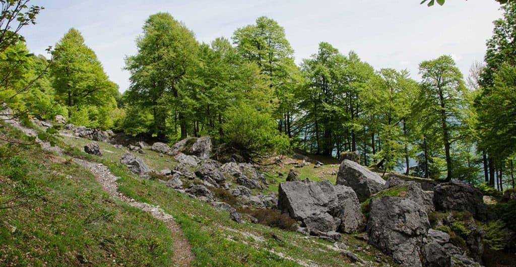 untersberg-dopplersteig-titelfoto