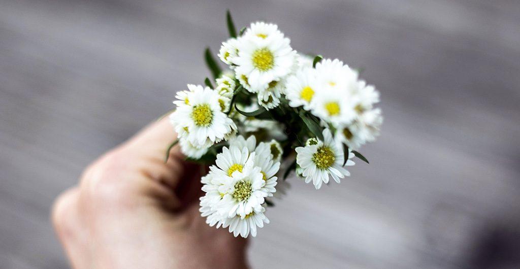 Ein Rezept mit Gänseblümchen