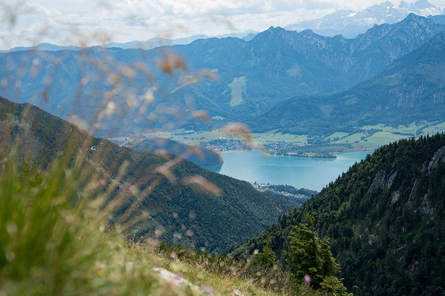 Bergtour auf den Schafberg