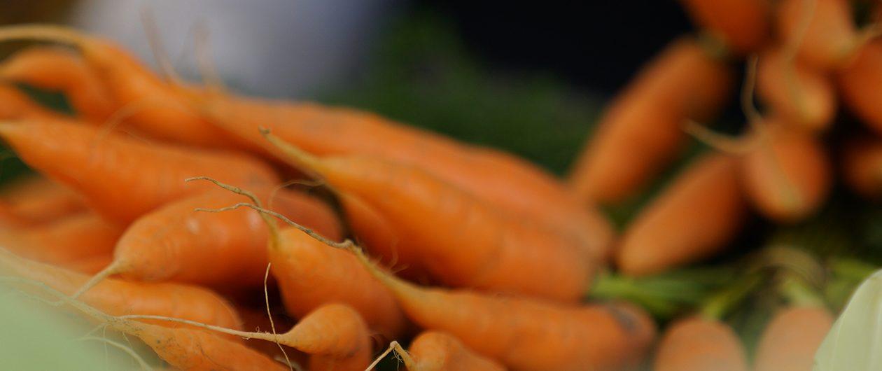 Obst- und Gemüsebauern